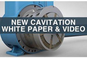 Blackmer Pump Cavitation
