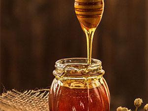 honey-processing-controls-upgrade