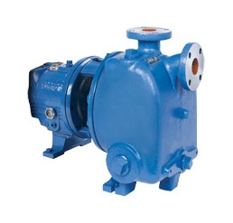 Goulds 3796 Pump