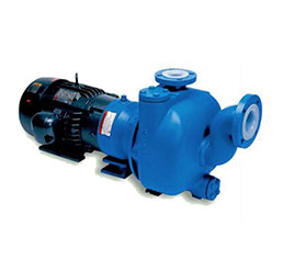 Goulds 3298 SP Pump