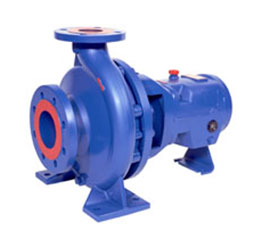 Goulds ICP Pump
