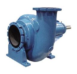 Goulds CW/CWX Pump