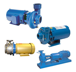Xylem Goulds End Suction