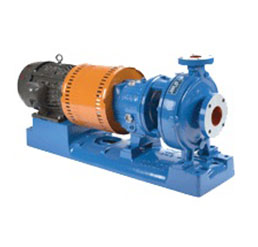 Goulds 3196 Pump