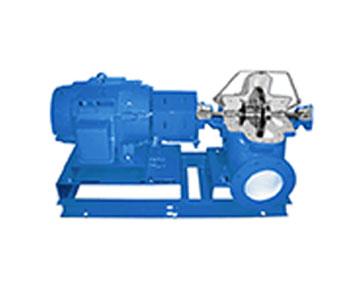 Xylem Goulds 8100 Pump
