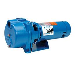 Goulds Model GT Pump