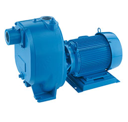 Xylem Marlow Series Pump