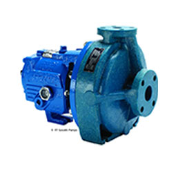 ITT Goulds NM 3171 Pump