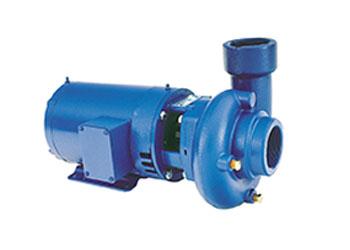 Xylem 3656LH Pump