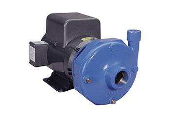 Xylem 3656S Pump