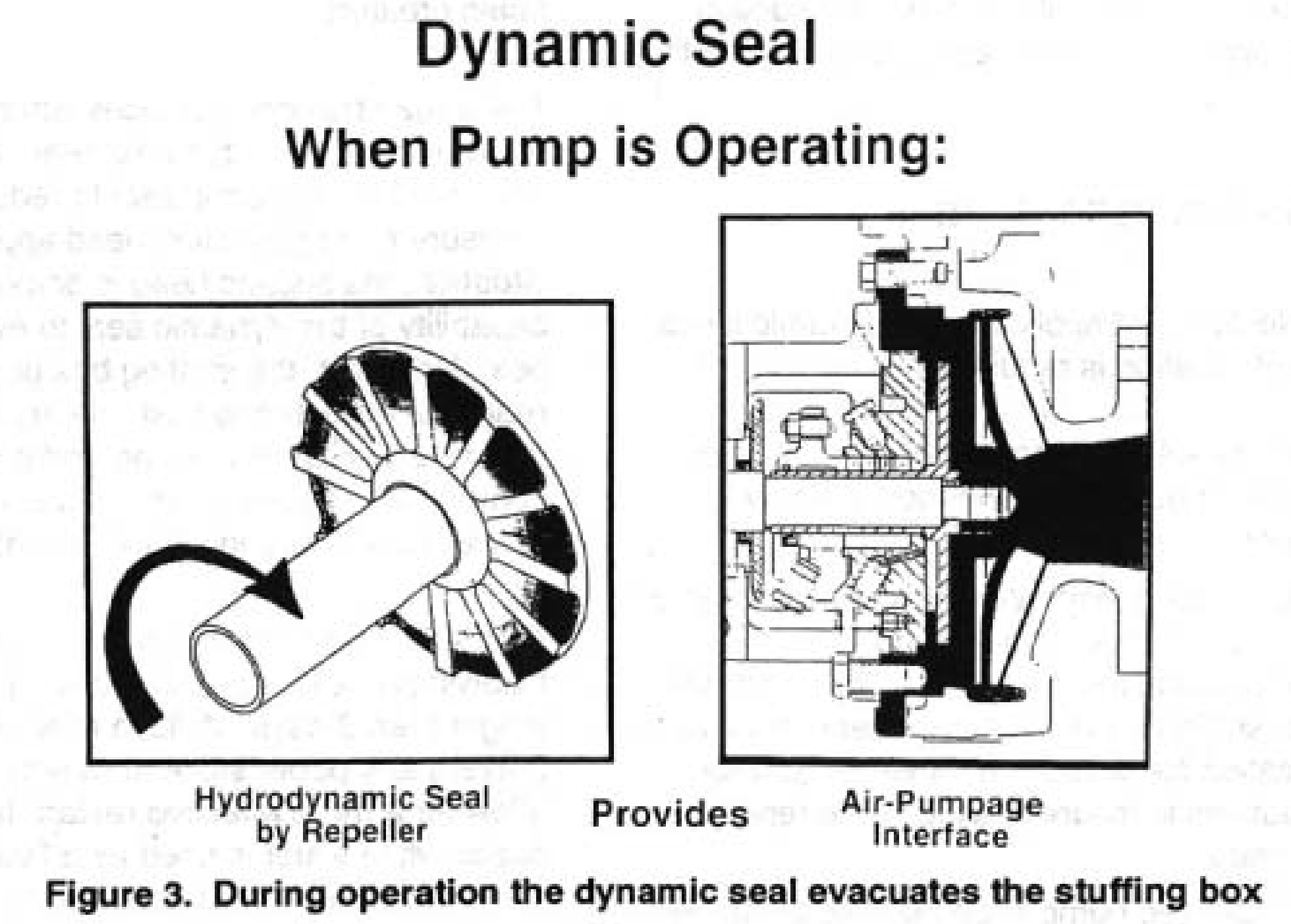 Dynamic Seal when Pump is Operating - figure 3