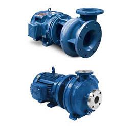 Griswold-ANSI-Pumps
